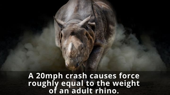 A 20mph crash causes force roughly equal to the weight of an adult rhino.
